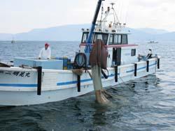漁獲の風景