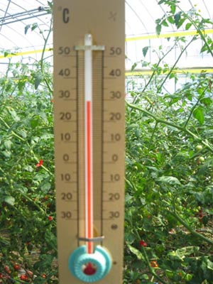 30℃を指す温度計!暑い!
