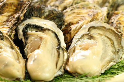岡山牡蠣シーズン到来